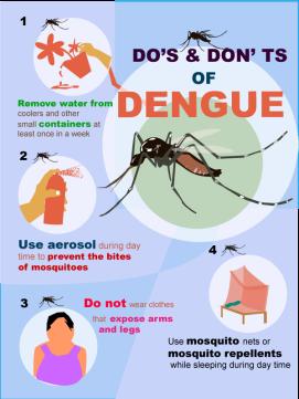 dengue-fever12